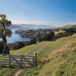 Celebrity Cruises New Zealand