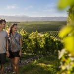 New Zealand Wine Vineyards Ecotourism gourmet Natural beauty New Zealand Cruise & Travel Depot LLC